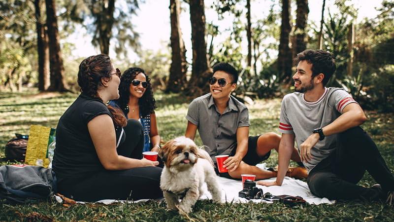 Nye venner sitter i parken sammen.